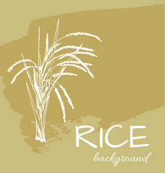 Background rice2eps vector