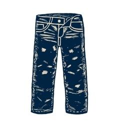 Denim jeans vector image