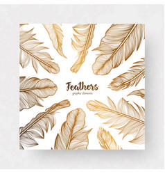 Design template with gold feathers for vector