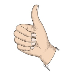 Gesture isolated on white background vector image