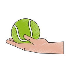 hand holding tennis ball vector image