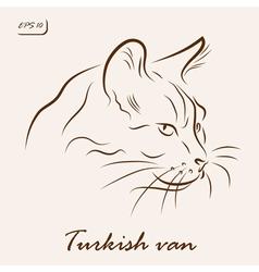 Turkish van cat vector