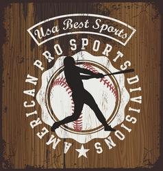 baseball wood board vector image vector image