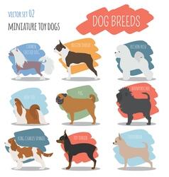 Dog breeds Miniature toy dog set icon Flat style vector image