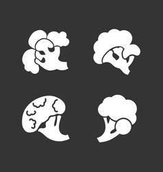 broccoli icon set simple style vector image
