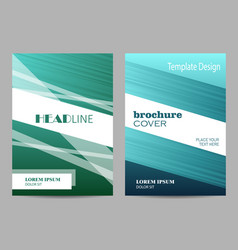 brochure template layout design abstract gray and vector image