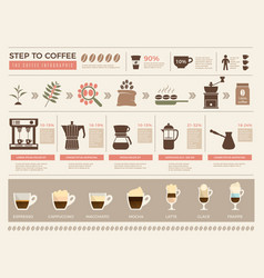 coffee infographic processes stages of coffee vector image