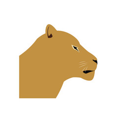Female head lion african animal courageous vector