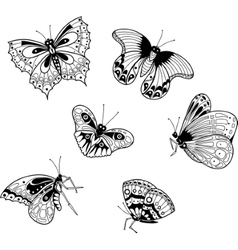 graphic image of exotic butterflies in cartoon vector image
