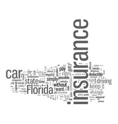 How to get affordable car insurance in florida vector