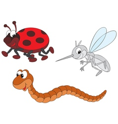 ladybug mosquito and worm vector image