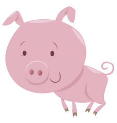 piglet farm animal character vector image