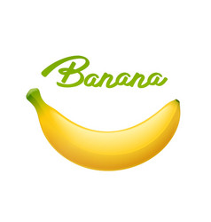ripe banana tropical fruit vector image