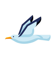Stylized seagull image of wild vector