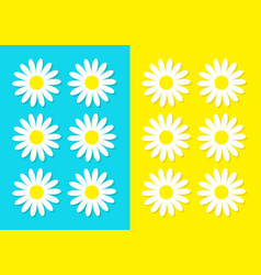 white daisy chamomile icon set cute flower plant vector image