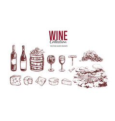 wine set hand drawn elements 3 vector image
