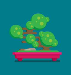 flat icon of bonsai tree vector image