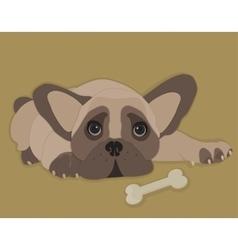 French Bulldog isolated vector image