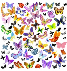 set of ladybug and butterfly vector image