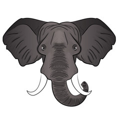 Elephant cartoon head vector