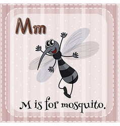 Flashcard of M is for mosquito vector image