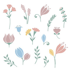 Flowers and floral elements set vector