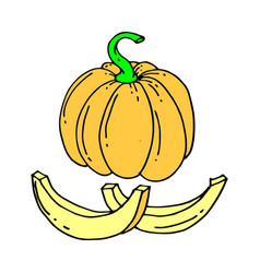 pumpkin or squash outline isolated vector image