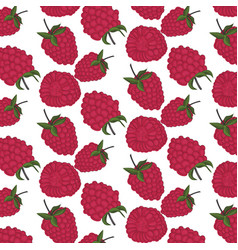 red berry pattern exotic summer raspberry texture vector image