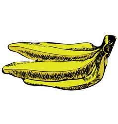 Retro hand drawn sketch style yellow summer vector