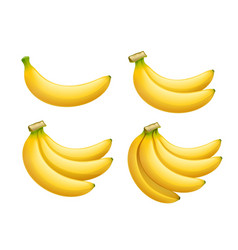 Ripe banana set tropical vector