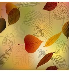 Autumn leafs texture vector image
