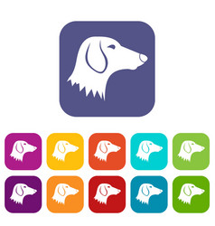 dachshund dog icons set vector image