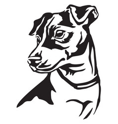 Decorative portrait of dog jack russell terrier vector