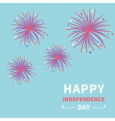 Fireworks on blue sky Independence Day vector image