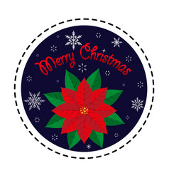 poinsettia merry christmas vector image