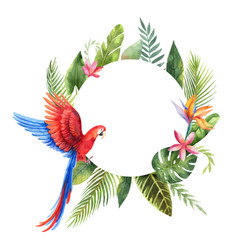 Watercolor frame with red parrot tropical vector