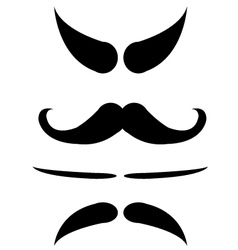mustache isolate vector image