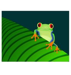 Red eyed tree frog sitting on leaf vector image