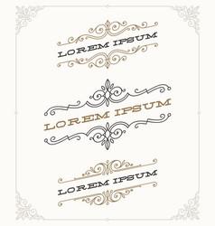 set of elegant vintage ornamental emblems vector image