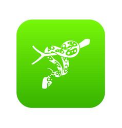 Ball python icon green vector