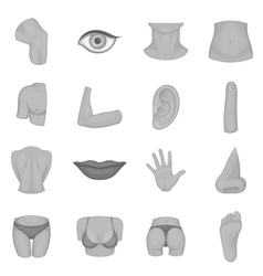 Body parts icons set monochrome style vector