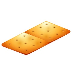 Butter cracker on white vector image