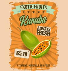 kuruba or curuba exotic fruit banana passionfruit vector image