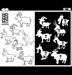 matching shapes game with goats coloring book page vector image