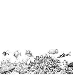 seabed inhabitants fish and corals sea and ocean vector image