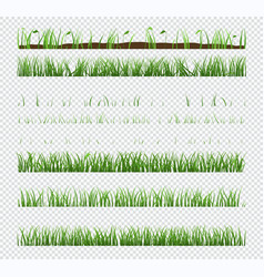 set elements green grass with plants isolated vector image