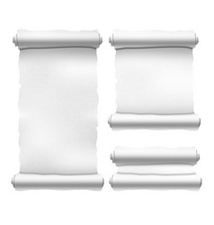 set of old white textured scrolls different shapes vector image