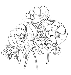 sketch of a flower anemones vector image vector image