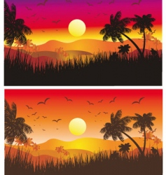 tropical desert sunset vector image
