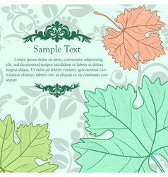 Retro cardboard with grape leafs vector image vector image